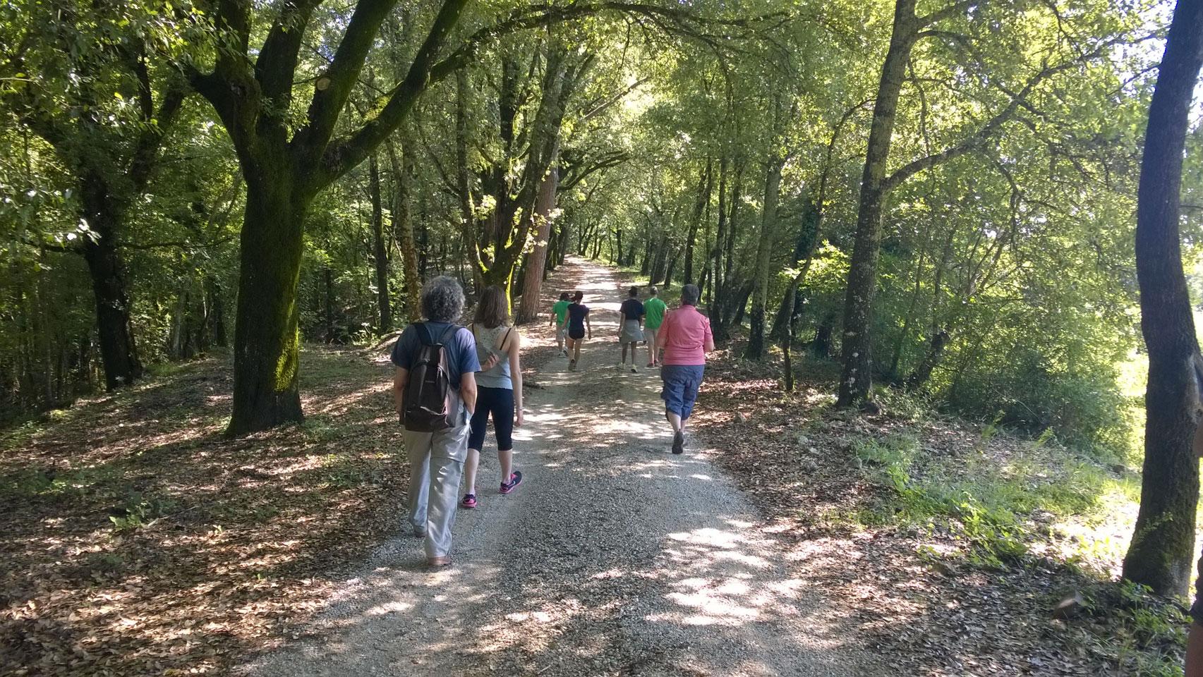 walking in the coutryside near Siena